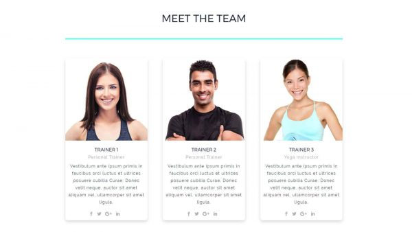 A screenshot of the Meet the Team section for displaying Personal Trainers of fitness staff.
