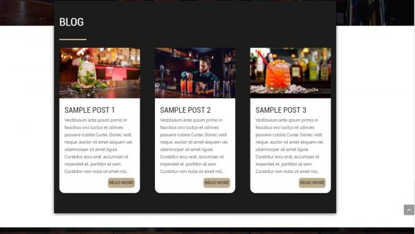A screenshot of the custom Blog section of theDivi Pub child theme